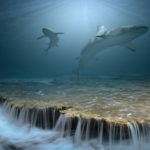 3d underwater HD wallpaper
