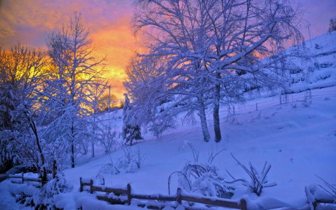 Winter HD Wallpaper