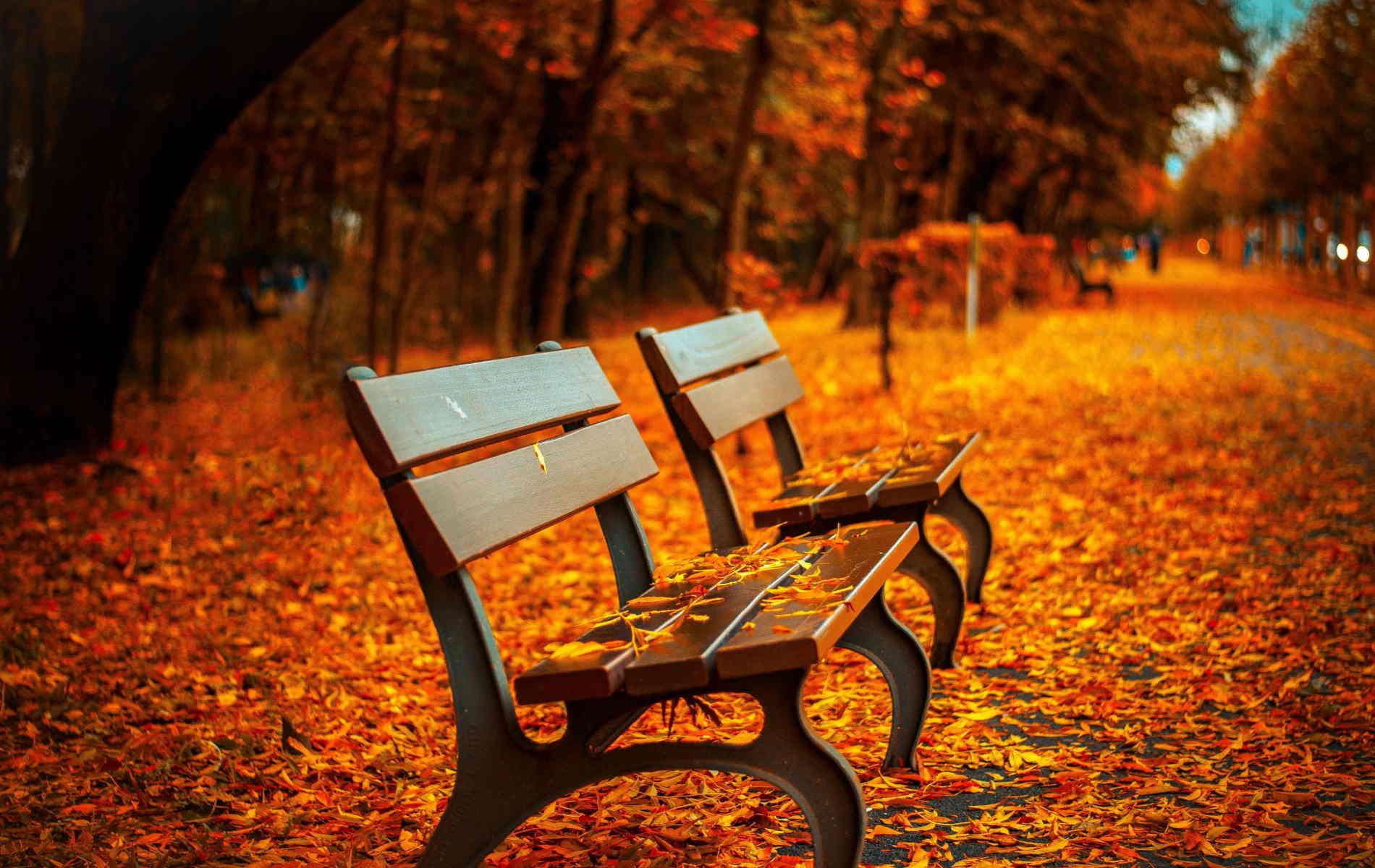 Autumn Desktop Wallpaper Forever Wallpapers
